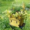 Các bước đơn giản để thiết kế khu vườn thôn dã